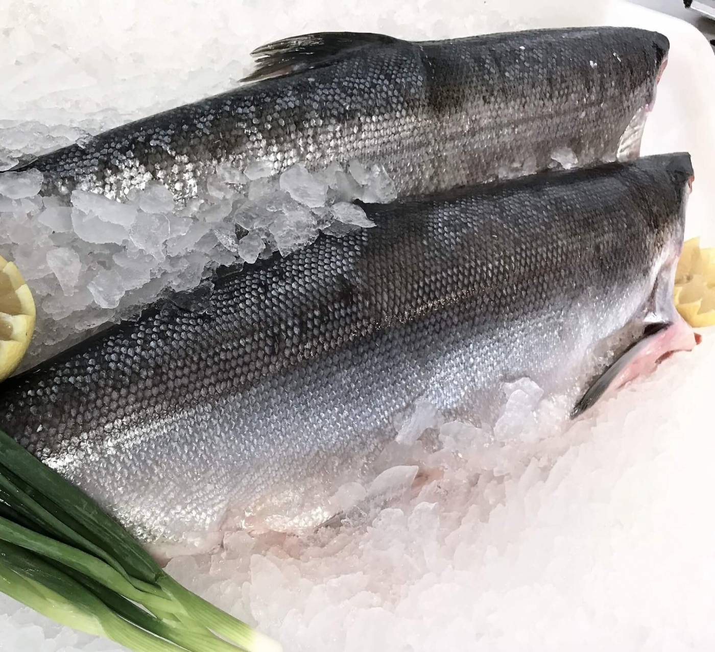 Whole Sockeye